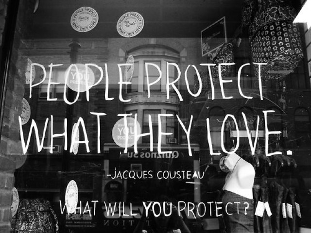 Jacques Cousteau quote 3
