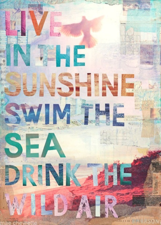 Live in the sunshine quote