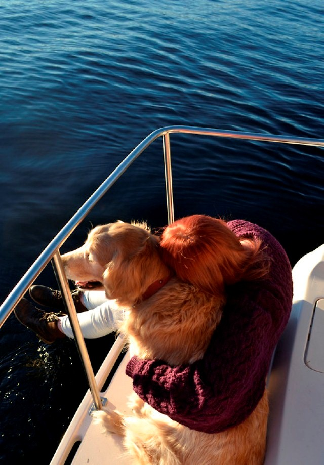 dog with redhead