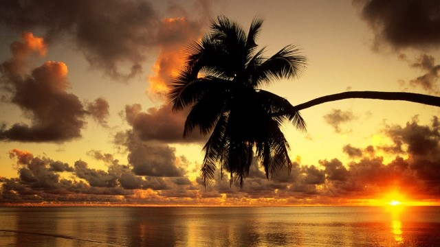 beautiful-tropical-sunset-99113