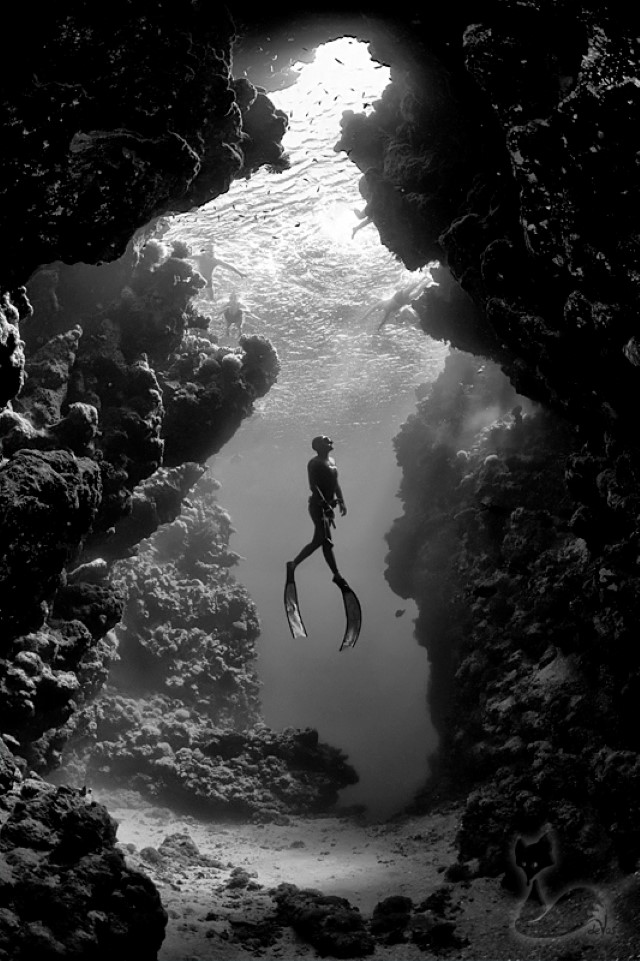underwater_photo_of_diver_in_black_and_white